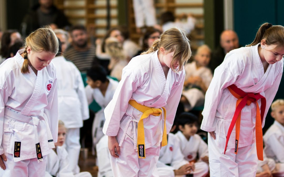 Taifu – Karate og dannelse
