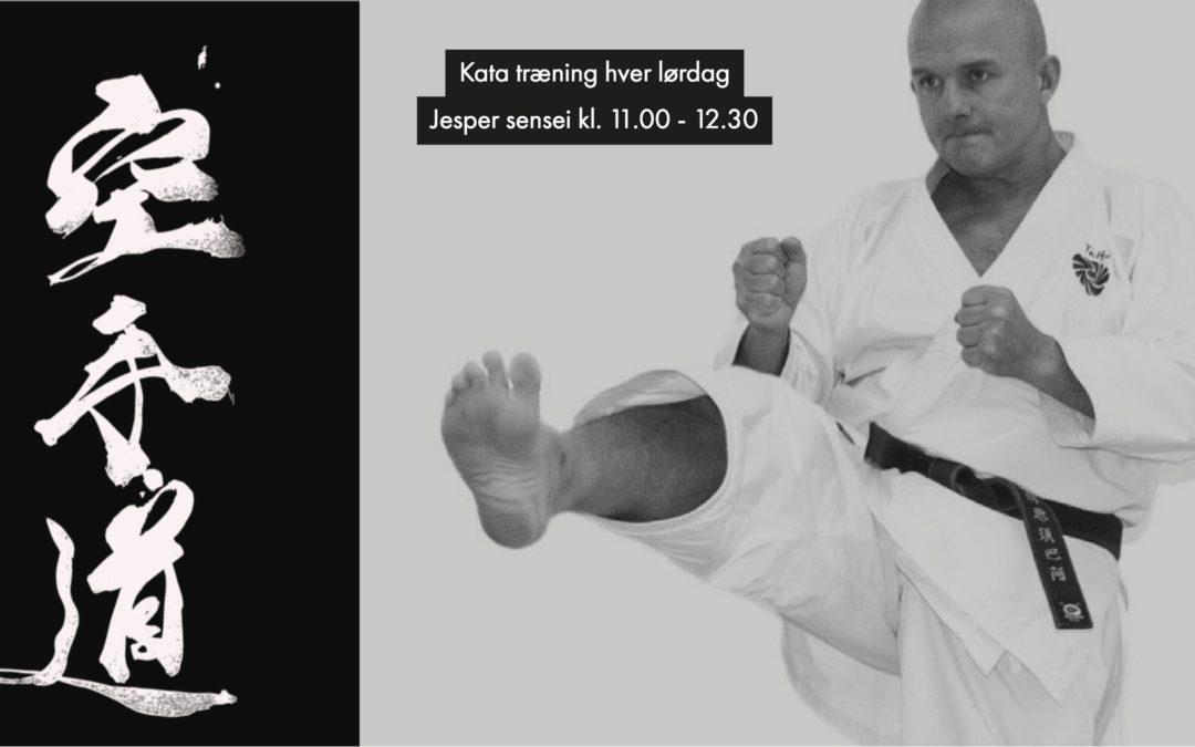 Kata træning med Jesper sensei 6. dan i Taifu