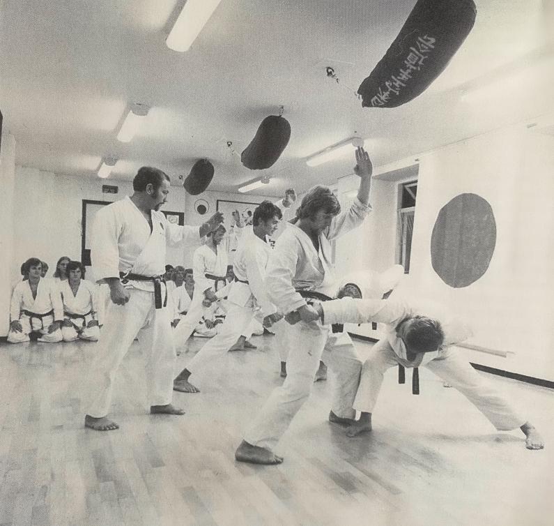 Nippon Karate-do Kai