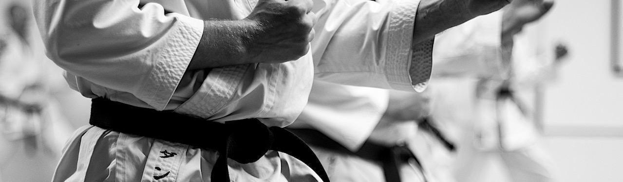 Værdier Taifu Karate Dojo